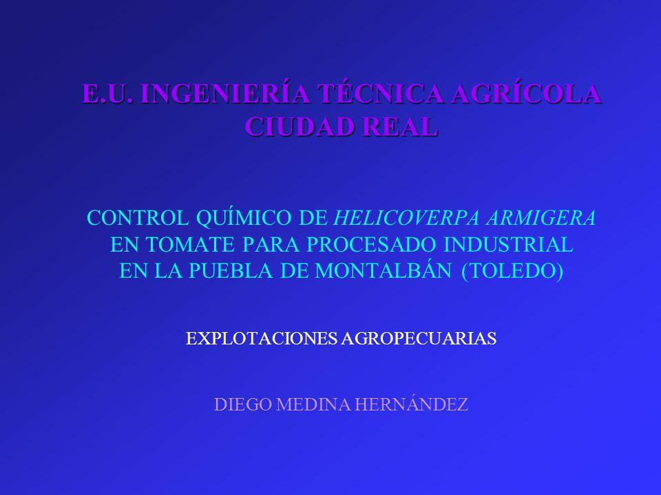 ingenieria tecnica agricola: