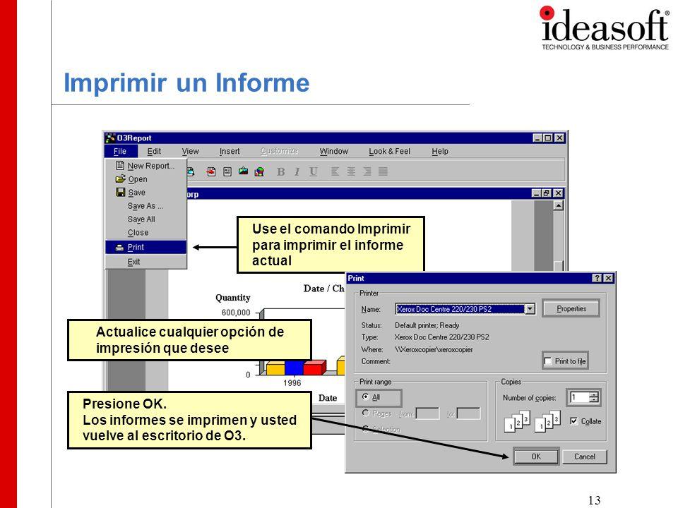 13 Imprimir un Informe Use el comando Imprimir para imprimir el informe actual Actualice cualquier opción de impresión que desee Presione OK.