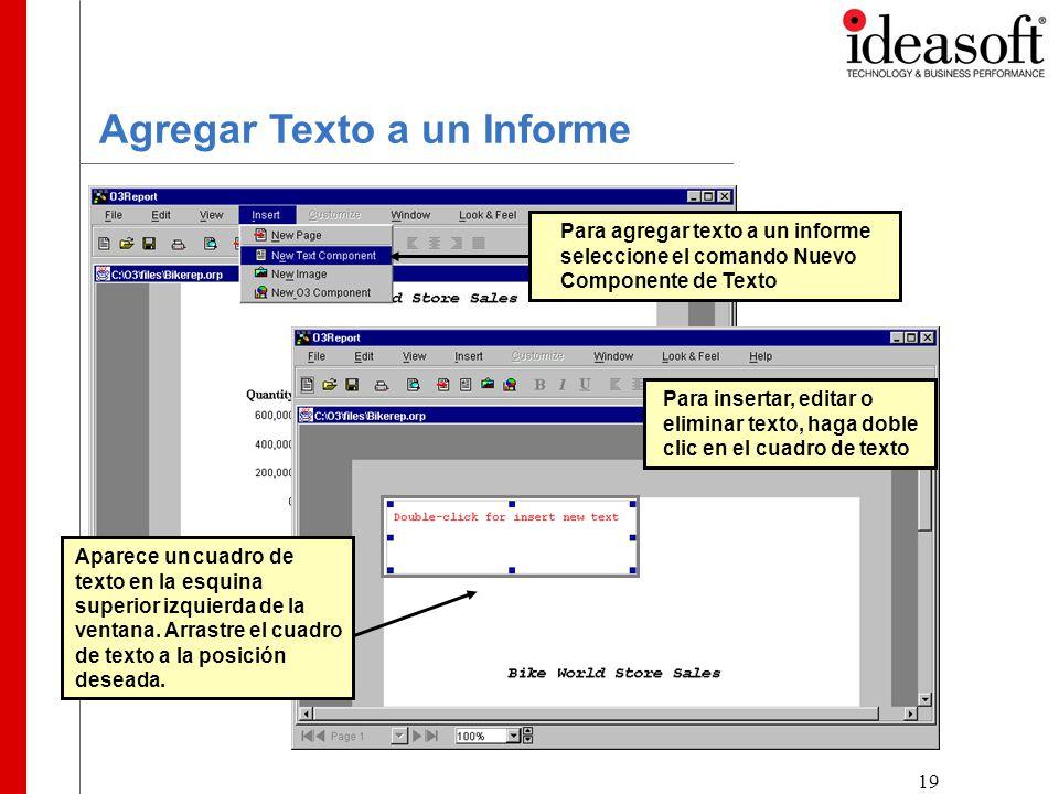 19 Agregar Texto a un Informe Para agregar texto a un informe seleccione el comando Nuevo Componente de Texto Aparece un cuadro de texto en la esquina superior izquierda de la ventana.