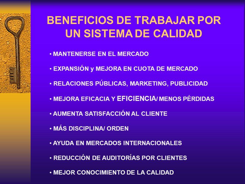 MANTENERSE EN EL MERCADO EXPANSIÓN y MEJORA EN CUOTA DE MERCADO RELACIONES PÚBLICAS, MARKETING, PUBLICIDAD MEJORA EFICACIA Y EFICIENCIA / MENOS PÉRDIDAS AUMENTA SATISFACCIÓN AL CLIENTE MÁS DISCIPLINA/ ORDEN AYUDA EN MERCADOS INTERNACIONALES REDUCCIÓN DE AUDITORÍAS POR CLIENTES MEJOR CONOCIMIENTO DE LA CALIDAD BENEFICIOS DE TRABAJAR POR UN SISTEMA DE CALIDAD