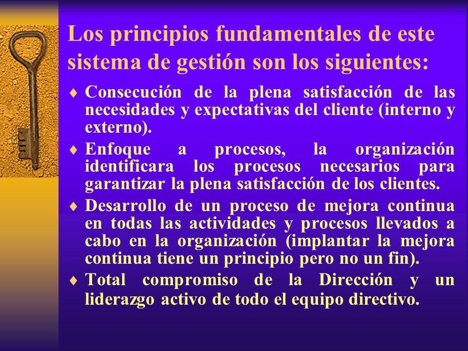 Los principios fundamentales de este sistema de gestión son los siguientes:  Consecución de la plena satisfacción de las necesidades y expectativas del cliente (interno y externo).
