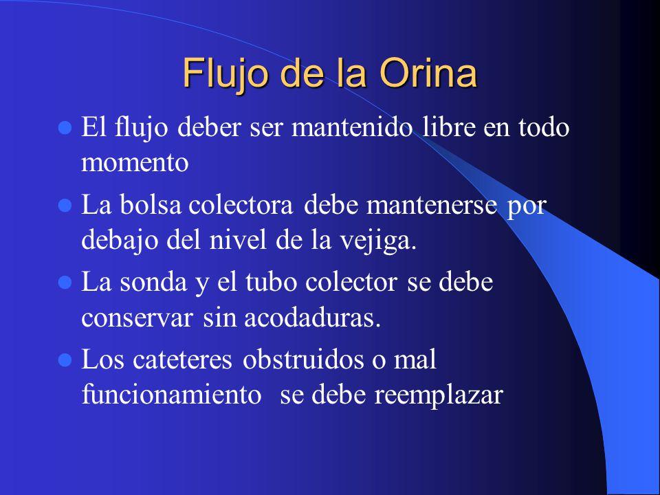 Flujo de la Orina El flujo deber ser mantenido libre en todo momento La bolsa colectora debe mantenerse por debajo del nivel de la vejiga.