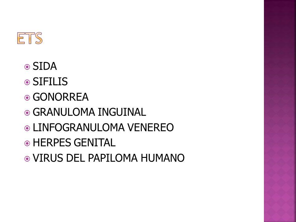  SIDA  SIFILIS  GONORREA  GRANULOMA INGUINAL  LINFOGRANULOMA VENEREO  HERPES GENITAL  VIRUS DEL PAPILOMA HUMANO