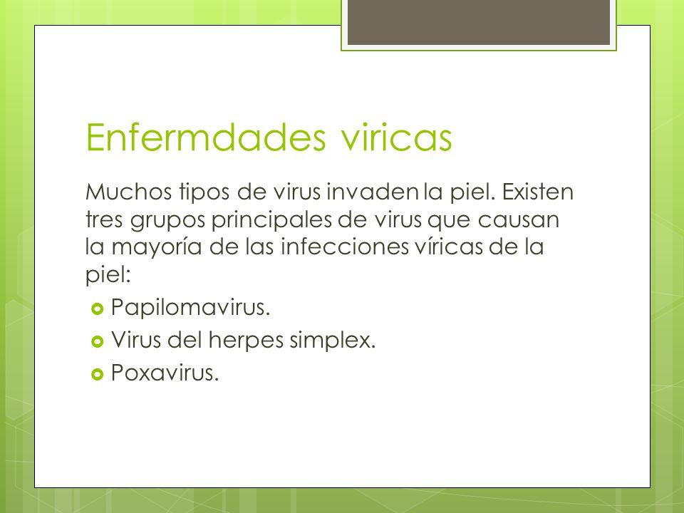 Enfermdades viricas Muchos tipos de virus invaden la piel.