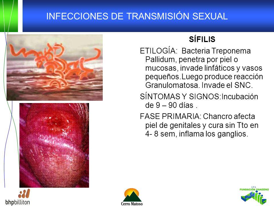 INFECCIONES DE TRANSMISIÓN SEXUAL SÍFILIS ETILOGÍA: Bacteria Treponema Pallidum, penetra por piel o mucosas, invade linfáticos y vasos pequeños.Luego produce reacción Granulomatosa.