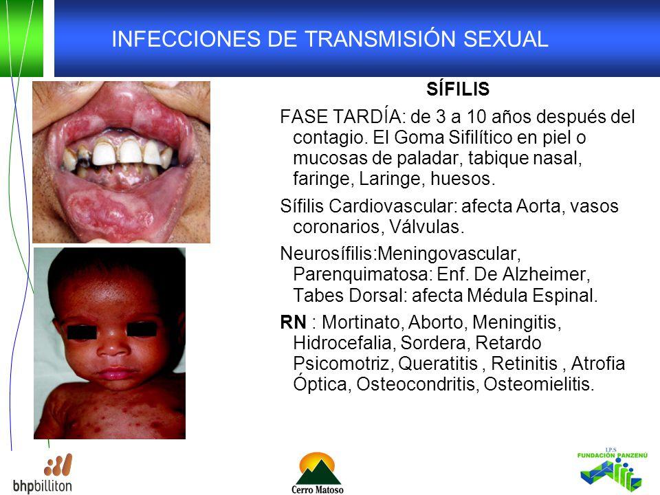 INFECCIONES DE TRANSMISIÓN SEXUAL SÍFILIS FASE TARDÍA: de 3 a 10 años después del contagio.
