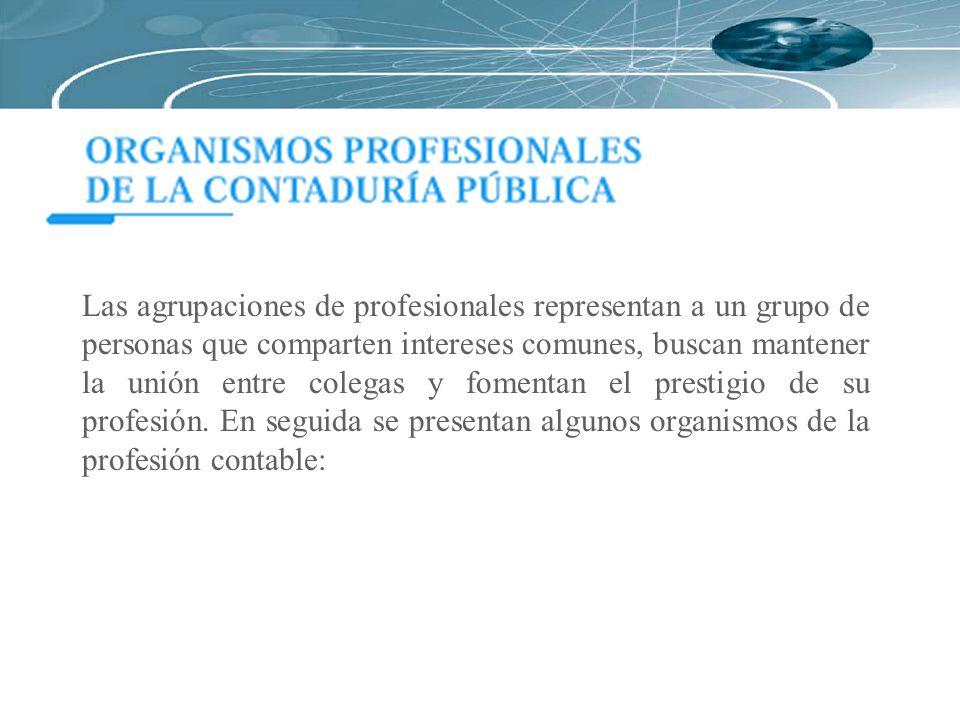 Las agrupaciones de profesionales representan a un grupo de personas que comparten intereses comunes, buscan mantener la unión entre colegas y fomenta
