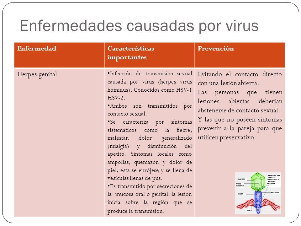 Enfermedades causadas por virus EnfermedadCaracterísticas importantes Prevención Herpes genital Infección de transmisión sexual causada por virus (herpes virus hominus).