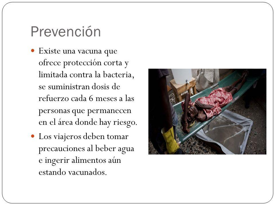 Prevención Existe una vacuna que ofrece protección corta y limitada contra la bacteria, se suministran dosis de refuerzo cada 6 meses a las personas que permanecen en el área donde hay riesgo.