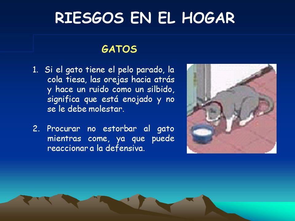 RIESGOS EN EL HOGAR 1. Procurar no acercarse a perros que se encuentren amarrados.