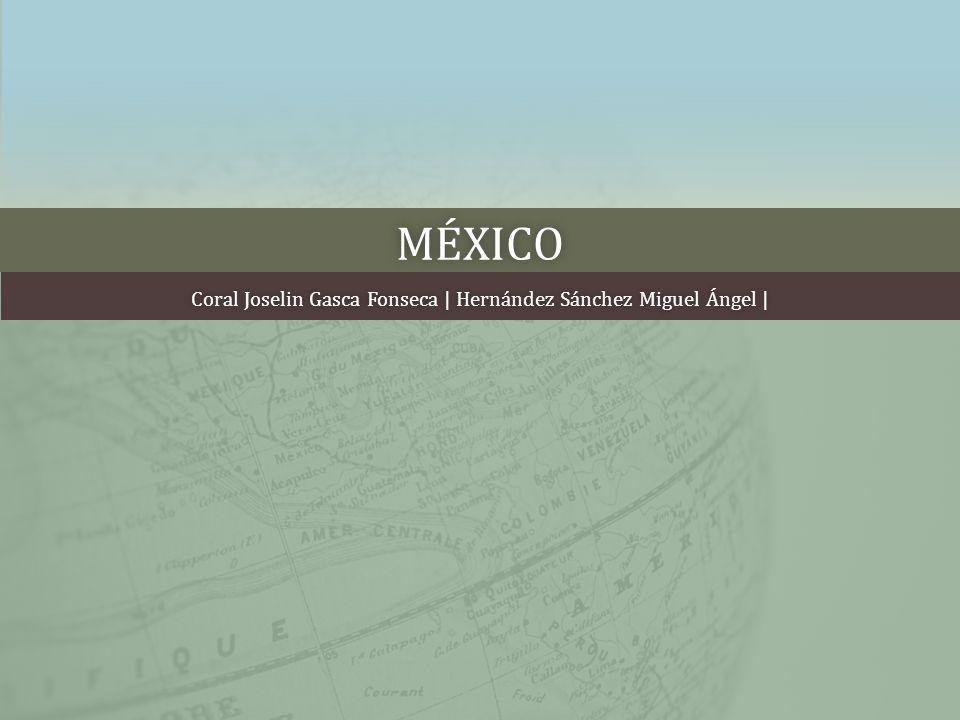 MÉXICO Coral Joselin Gasca Fonseca | Hernández Sánchez Miguel Ángel |Coral Joselin Gasca Fonseca | Hernández Sánchez Miguel Ángel |