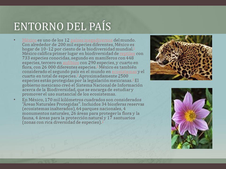 ENTORNO DEL PAÍSENTORNO DEL PAÍS México es uno de los 12 países megadiversos del mundo.