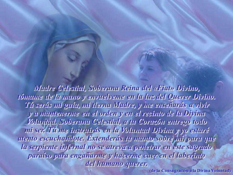 Madre Celestial, Soberana Reina del «Fiat» Divino, tómame de la mano y envuelveme en la luz del Querer Divino.