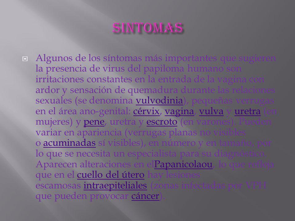  Algunos de los síntomas más importantes que sugieren la presencia de virus del papiloma humano son irritaciones constantes en la entrada de la vagina con ardor y sensación de quemadura durante las relaciones sexuales (se denomina vulvodinia), pequeñas verrugas en el área ano-genital: cérvix, vagina, vulva y uretra (en mujeres) y pene, uretra y escroto (en varones).