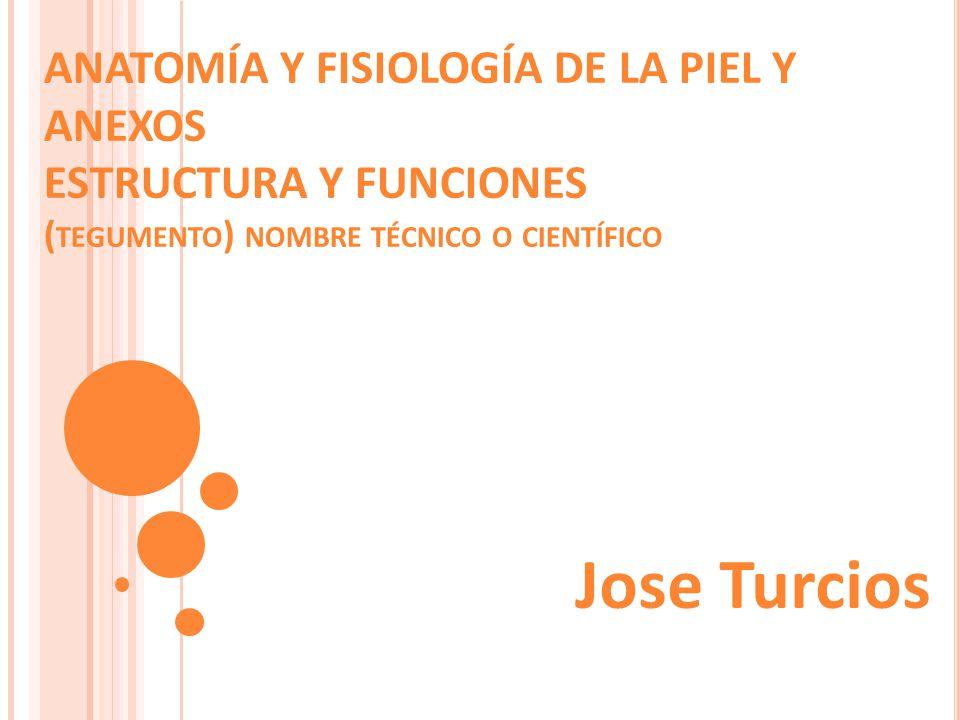 ANATOMÍA Y FISIOLOGÍA DE LA PIEL Y ANEXOS ESTRUCTURA Y FUNCIONES ( TEGUMENTO ) NOMBRE TÉCNICO O CIENTÍFICO Jose Turcios