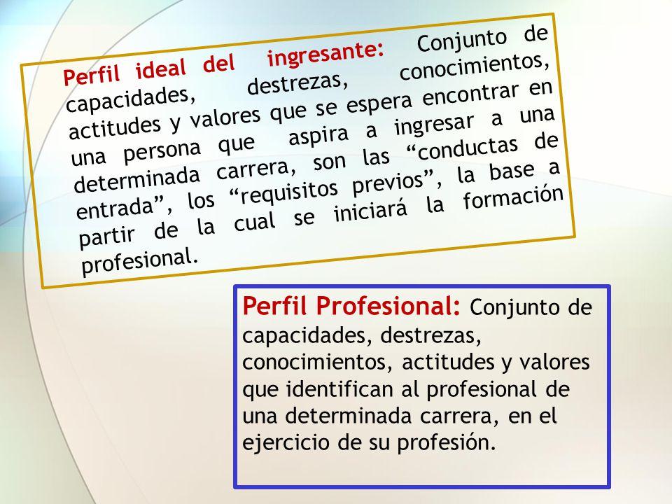 Perfil ideal del ingresante: Conjunto de capacidades, destrezas, conocimientos, actitudes y valores que se espera encontrar en una persona que aspira