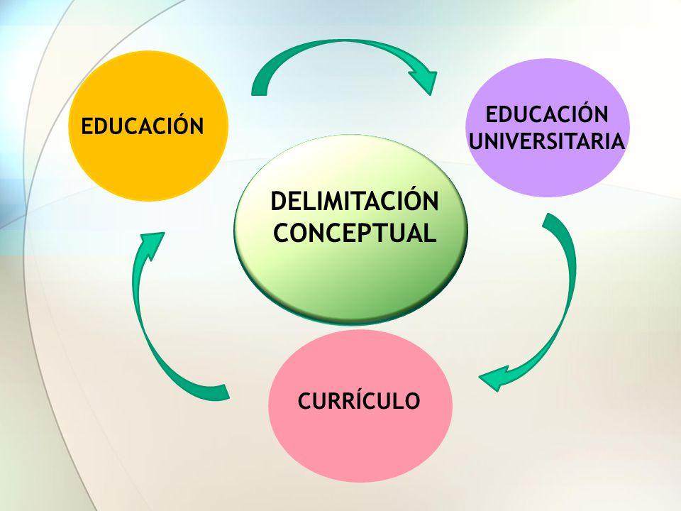 DELIMITACIÓN CONCEPTUAL EDUCACIÓN UNIVERSITARIA CURRÍCULO