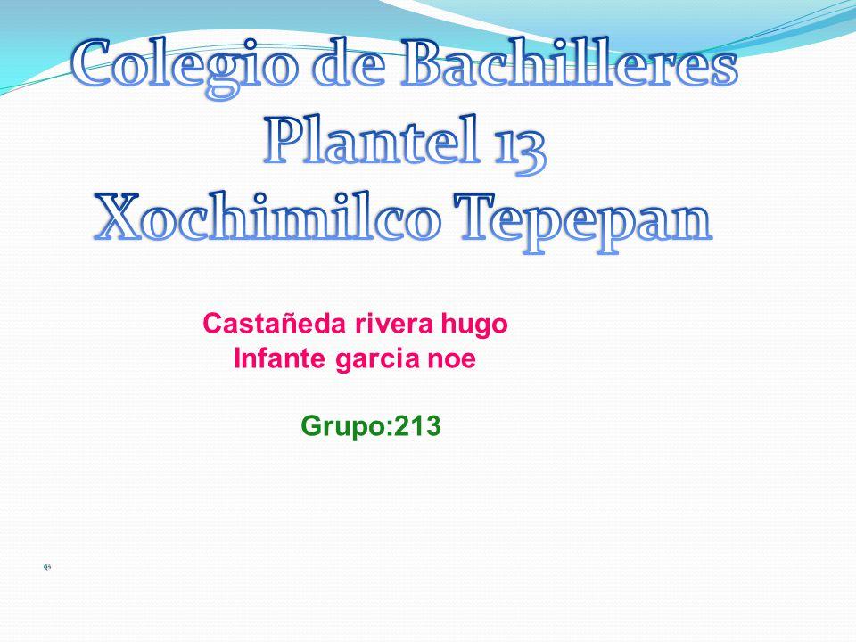 Castañeda rivera hugo Infante garcia noe Grupo:213