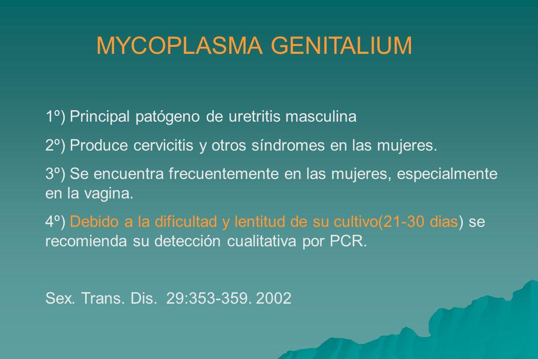 MYCOPLASMA GENITALIUM 1º) Principal patógeno de uretritis masculina 2º) Produce cervicitis y otros síndromes en las mujeres.