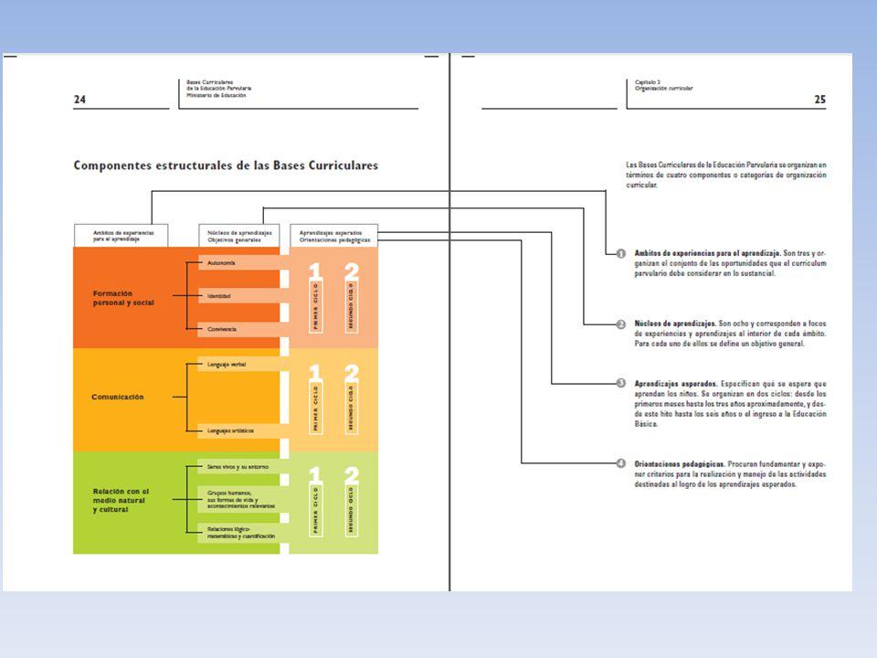 Currículum: Es una selección cultural, cuyos elementos fundamentales son: capacidades – destrezas y valores – actitudes, contenidos y métodos / procedimientos Diseño Curricular: Implica la selección de dichos elementos y una planificación adecuada de los mismos para llevarlos a las aulas.