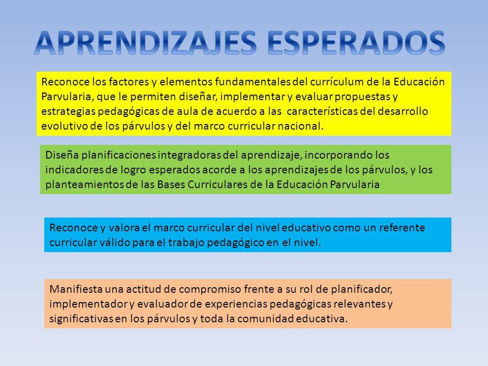 Reconoce los factores y elementos fundamentales del currículum de la Educación Parvularia, que le permiten diseñar, implementar y evaluar propuestas y