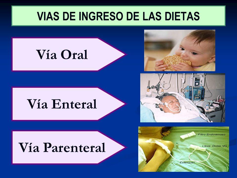 VIAS DE INGRESO DE LAS DIETAS Vía Oral Vía Enteral Vía Parenteral