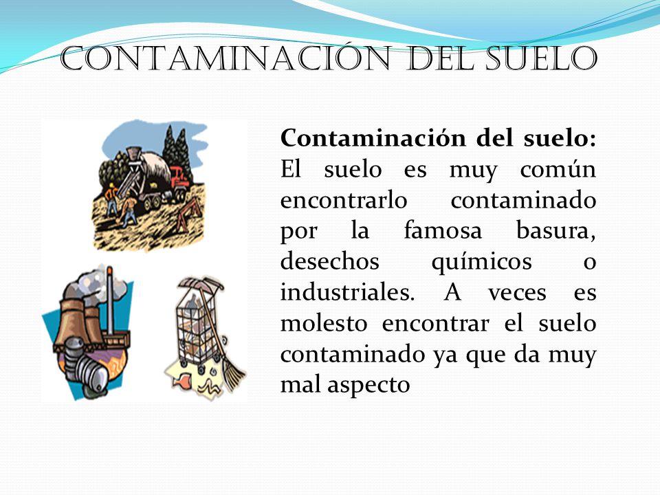 Contaminación del suelo: El suelo es muy común encontrarlo contaminado por la famosa basura, desechos químicos o industriales.