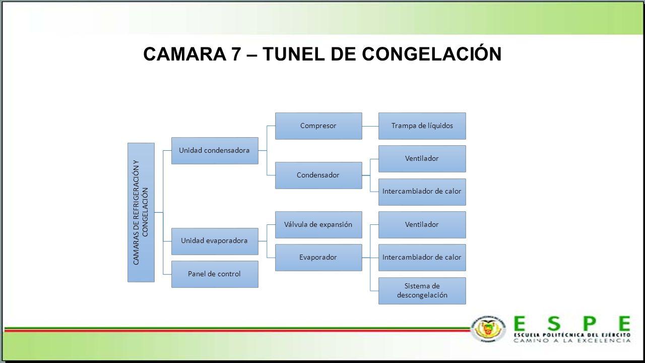 CAMARA 7 – TUNEL DE CONGELACIÓN CAMARAS DE REFRIGERACIÓN Y CONGELACIÓN Unidad condensadora CompresorTrampa de líquidos Condensador Ventilador Intercambiador de calor Unidad evaporadora Válvula de expansión Evaporador Ventilador Intercambiador de calor Sistema de descongelación Panel de control