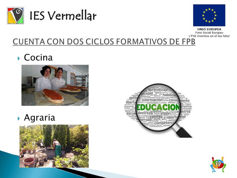 Formacion Profesional Cocina | Cocina Agraria La Formacion Profesional Basica Es La Base De