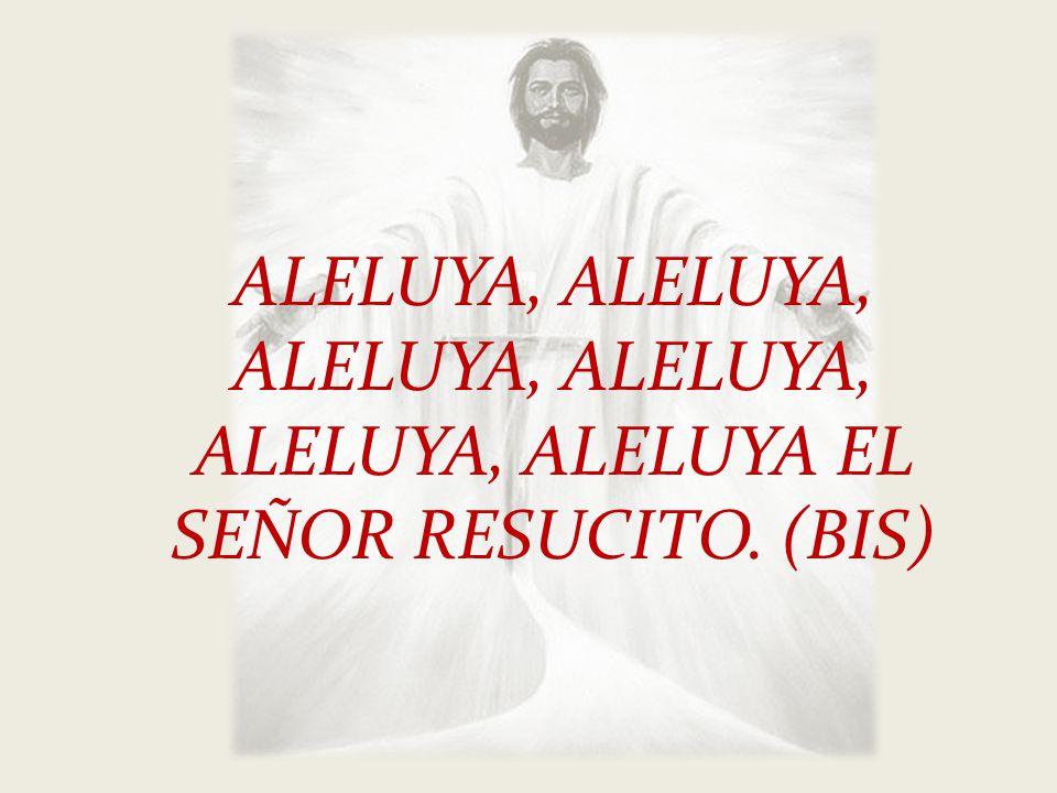ALELUYA, ALELUYA, ALELUYA, ALELUYA, ALELUYA, ALELUYA EL SEÑOR RESUCITO. (BIS)
