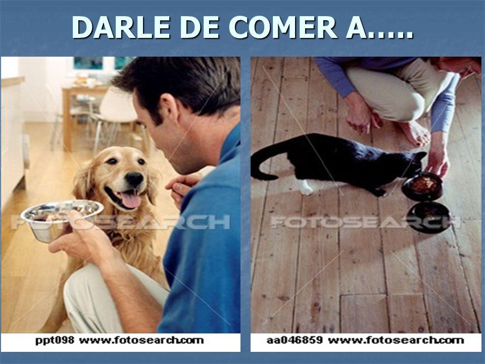 DARLE DE COMER A…..