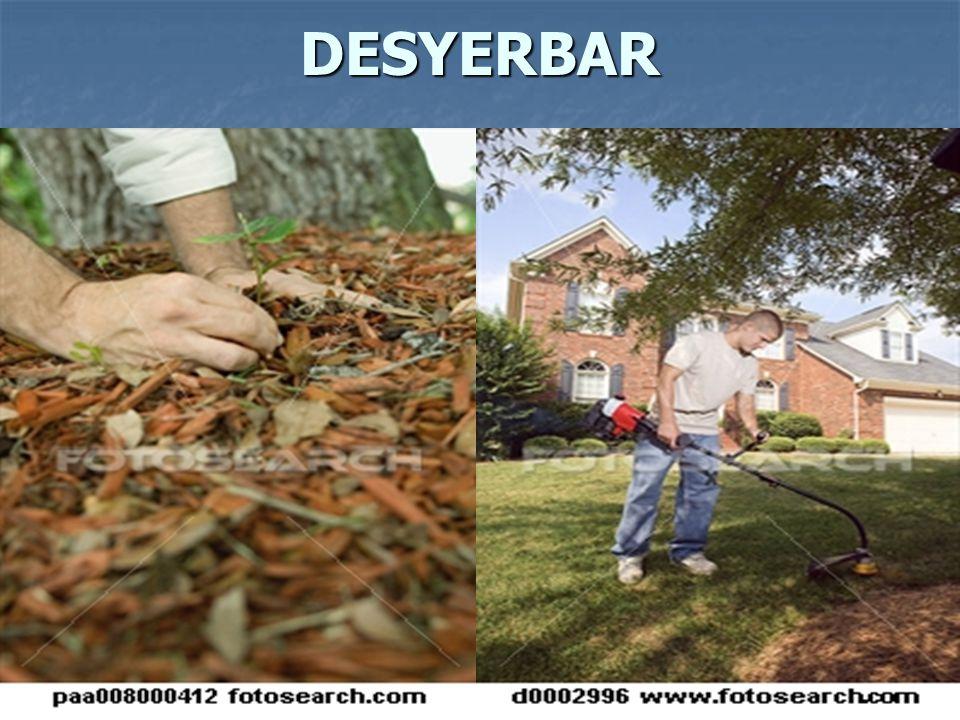 DESYERBAR