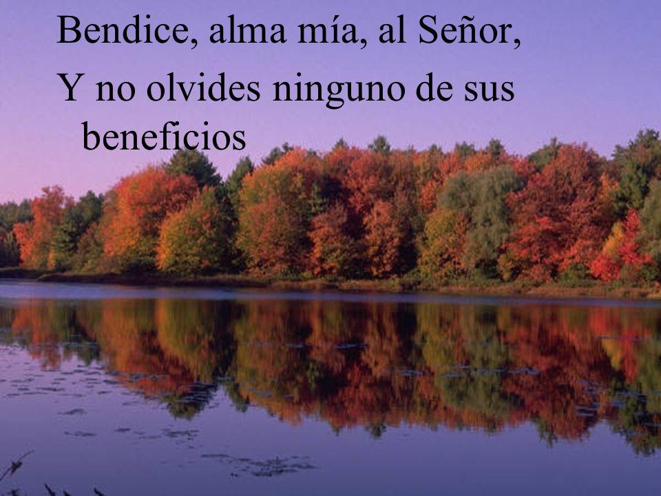 Resultado de imagen de bendice alma mia al señor y no olvides sus beneficios
