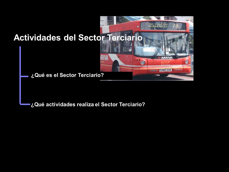 Actividades del Sector Terciario ¿Qué es el Sector Terciario.