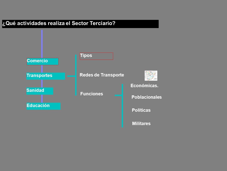 ¿Qué actividades realiza el Sector Terciario.