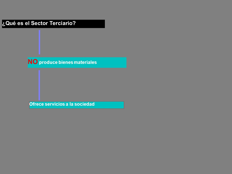 ¿Qué es el Sector Terciario? Ofrece servicios a la sociedad NO produce bienes materiales