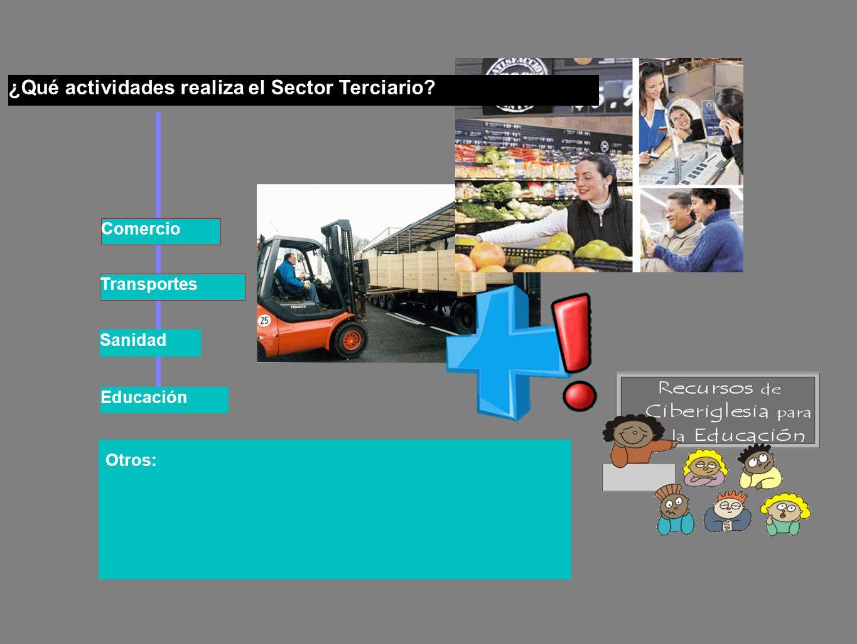 ¿Qué actividades realiza el Sector Terciario? Comercio Transportes Sanidad Educación Otros: