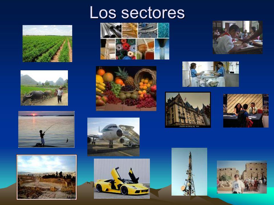 Los sectores