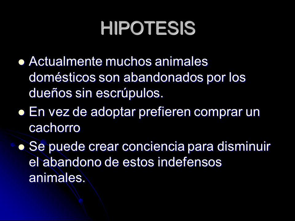HIPOTESIS Actualmente muchos animales domésticos son abandonados por los dueños sin escrúpulos.