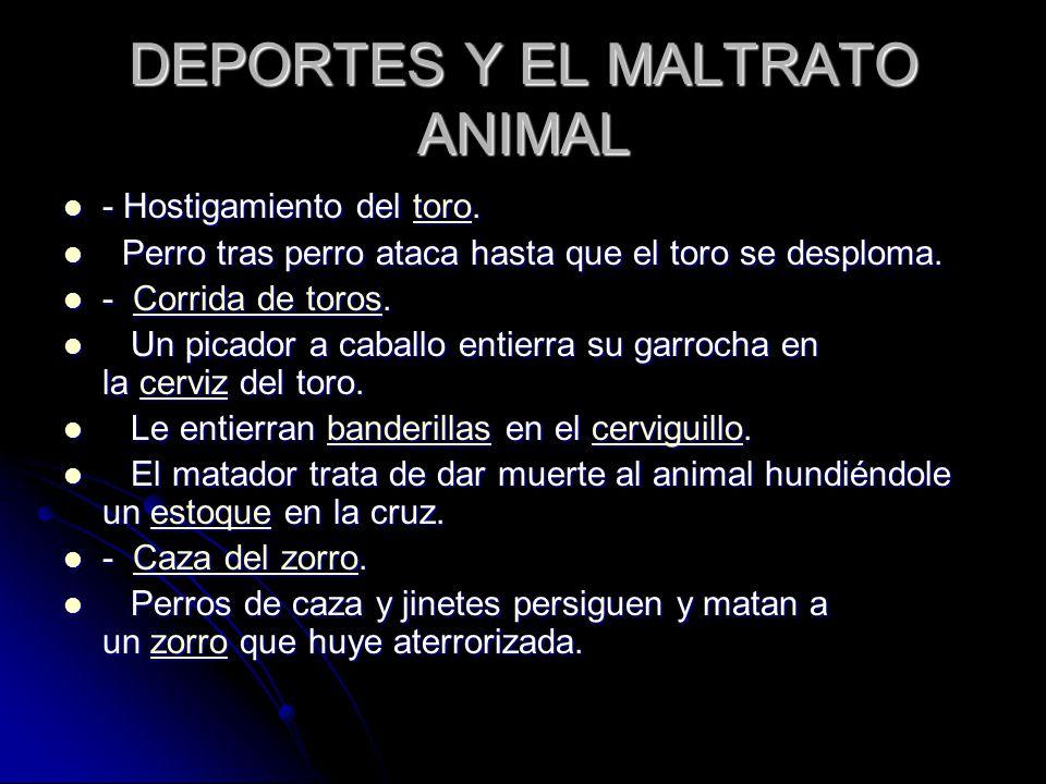 DEPORTES Y EL MALTRATO ANIMAL - Hostigamiento del toro.