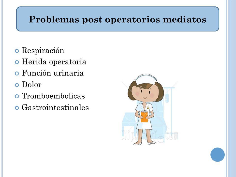 Respiración Herida operatoria Función urinaria Dolor Tromboembolicas Gastrointestinales Problemas post operatorios mediatos