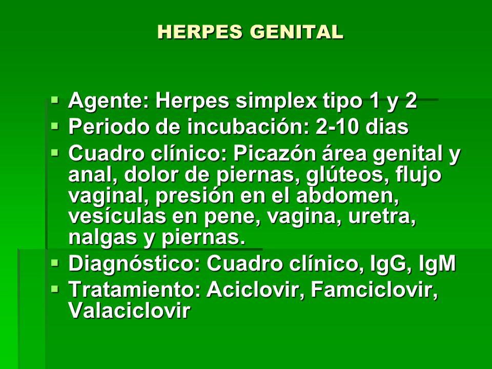 HERPES GENITAL  Agente: Herpes simplex tipo 1 y 2  Periodo de incubación: 2-10 dias  Cuadro clínico: Picazón área genital y anal, dolor de piernas, glúteos, flujo vaginal, presión en el abdomen, vesículas en pene, vagina, uretra, nalgas y piernas.