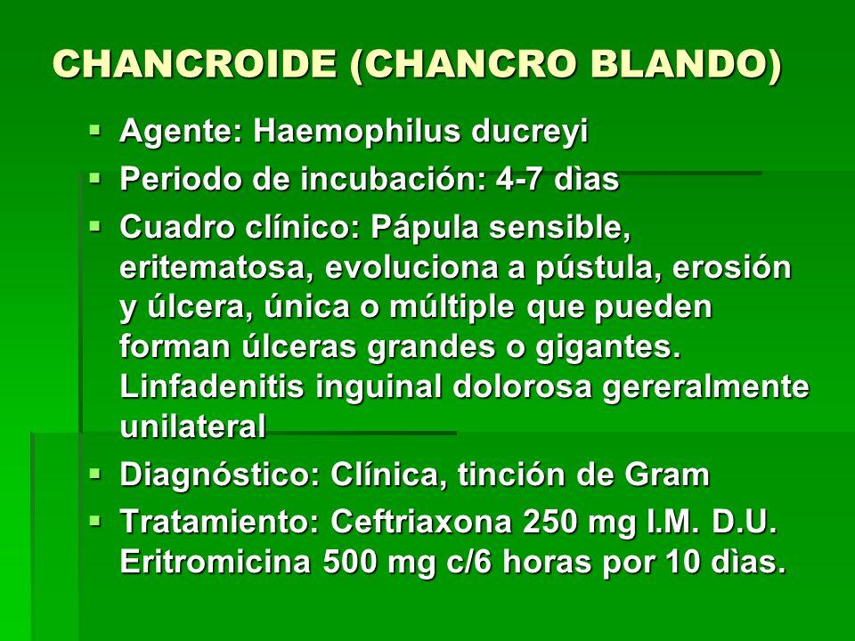 CHANCROIDE (CHANCRO BLANDO)  Agente: Haemophilus ducreyi  Periodo de incubación: 4-7 dìas  Cuadro clínico: Pápula sensible, eritematosa, evoluciona a pústula, erosión y úlcera, única o múltiple que pueden forman úlceras grandes o gigantes.