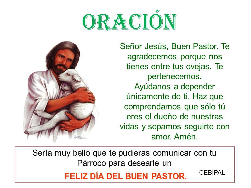 Señor Jesús, Buen Pastor.Te agradecemos porque nos tienes entre tus ovejas.