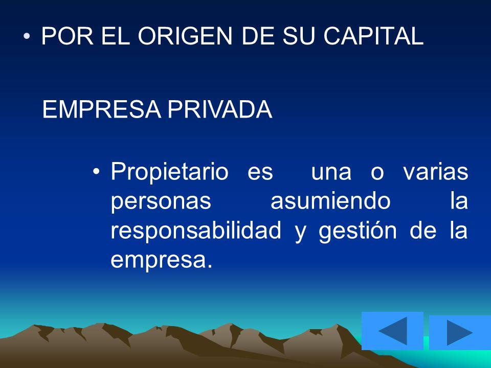 POR EL ORIGEN DE SU CAPITAL EMPRESA PRIVADA Propietario es una o varias personas asumiendo la responsabilidad y gestión de la empresa.