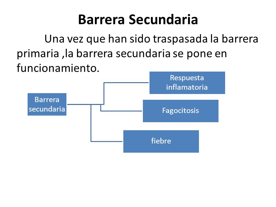 Barrera Secundaria Una vez que han sido traspasada la barrera primaria,la barrera secundaria se pone en funcionamiento.