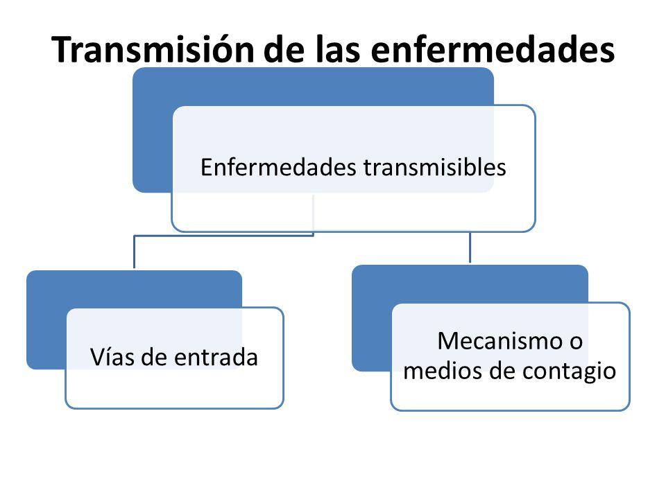 Transmisión de las enfermedades Enfermedades transmisibles Vías de entrada Mecanismo o medios de contagio