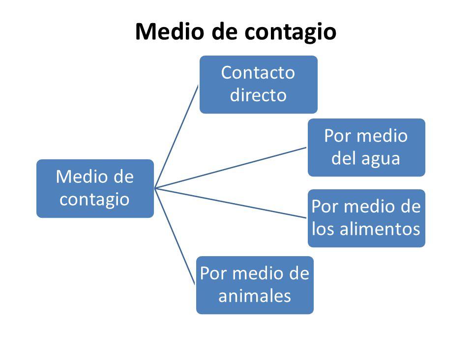 Medio de contagio Contacto directo Por medio del agua Por medio de los alimentos Por medio de animales