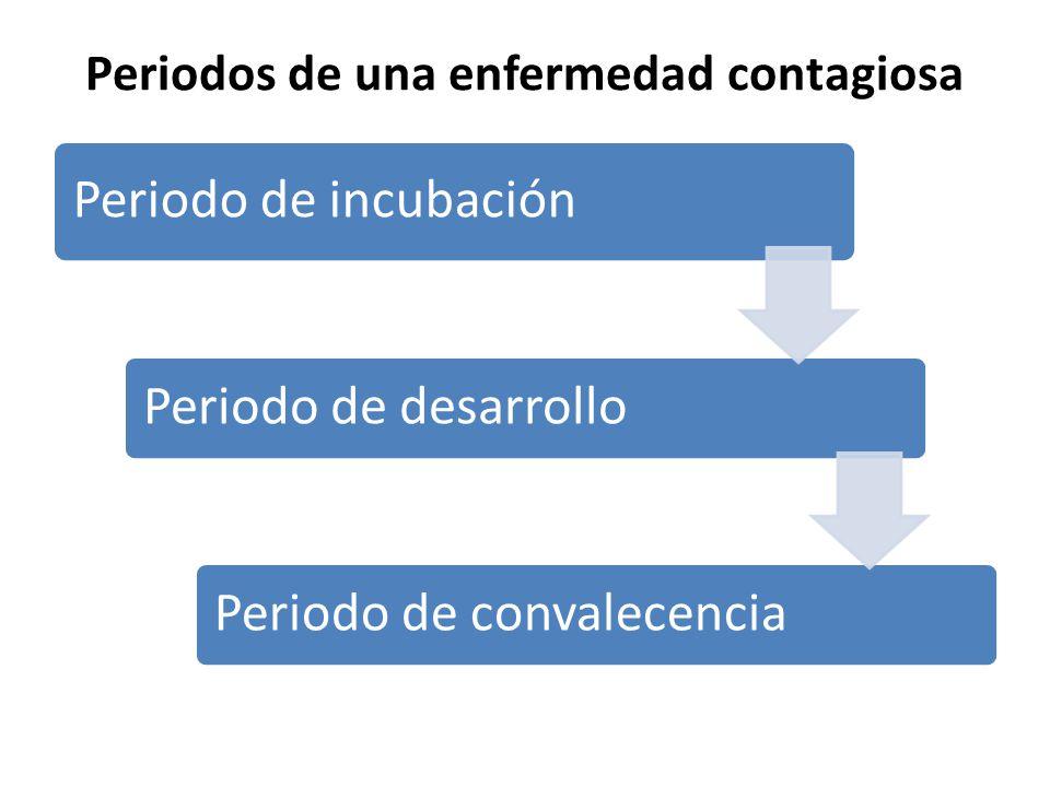 Periodos de una enfermedad contagiosa Periodo de incubación Periodo de desarrollo Periodo de convalecencia