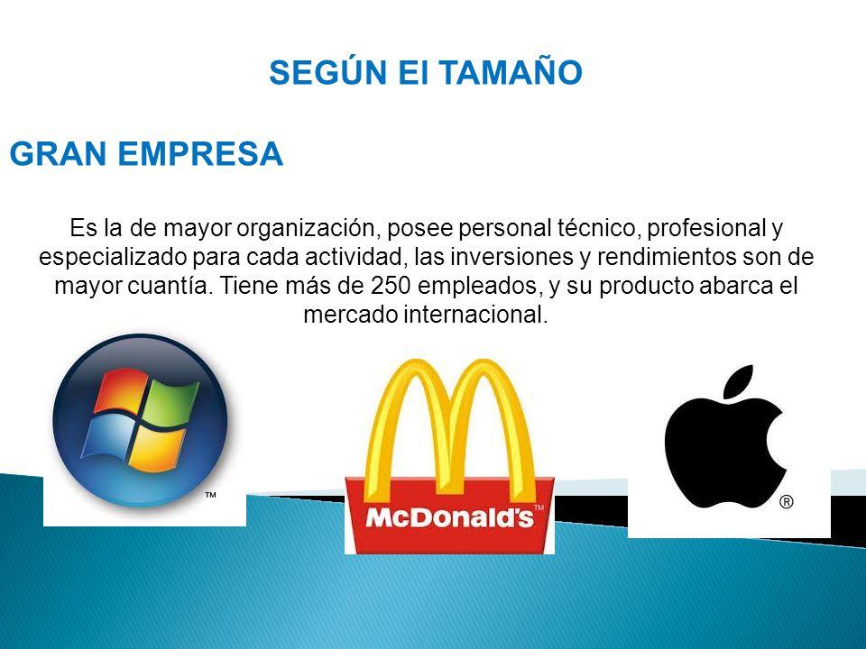 SEGÚN El TAMAÑO GRAN EMPRESA Es la de mayor organización, posee personal técnico, profesional y especializado para cada actividad, las inversiones y rendimientos son de mayor cuantía.